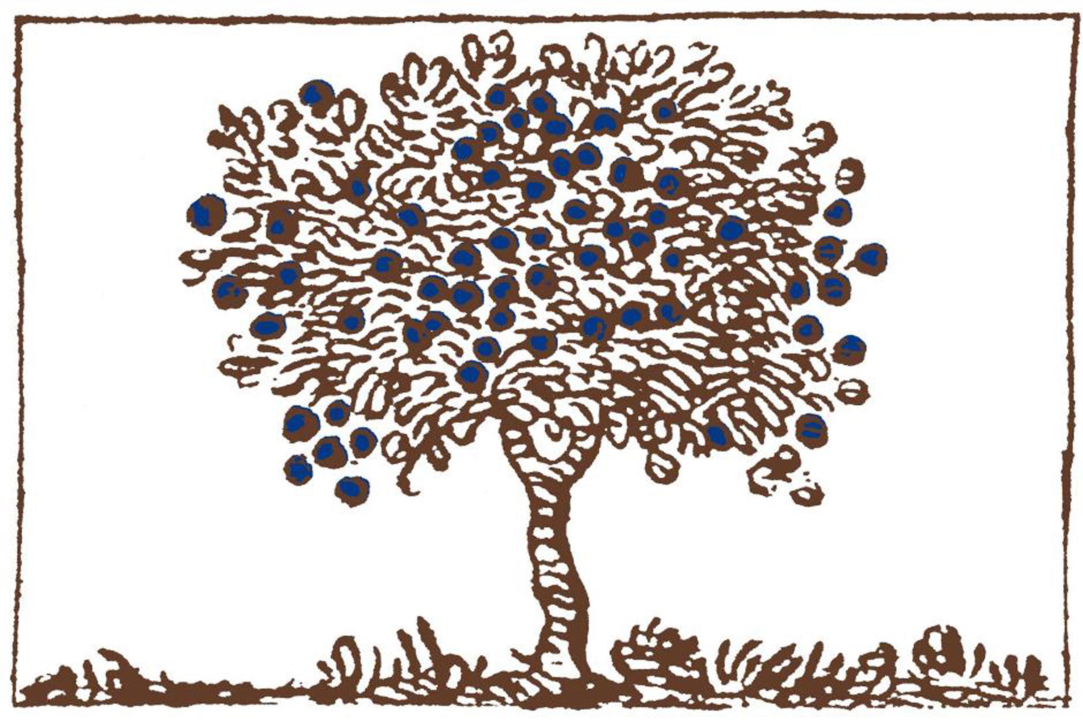 Forum du livre saint louis alsace rencontres - L arbre le pommier ...